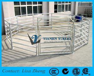 Heavy Duty Portable Cattle Panels/Gate Panels/Sliding Gate pictures & photos