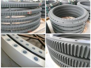 Torriani Gianni External Gear Turntable Bearing Slewing Ring Bearing E. 1050.20.00. B pictures & photos