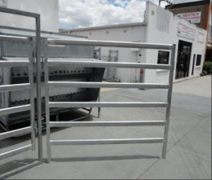 Australia Hot Dipped Galvanized Cattle Corral Panel/1.8m*2.1m Sheep Panel pictures & photos