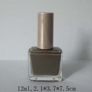 Np532 Long Lasting Quick Dry Nail Polish Nail Varnish
