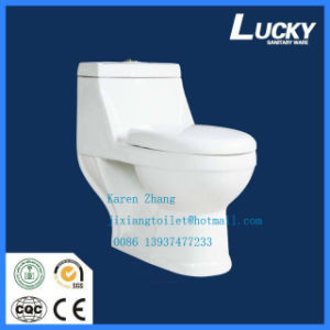 Saudi Arabia One-Piece Washdown Wc Toilet with Saso Certificate pictures & photos