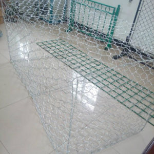 High Quality Green PVC Coated Gabion Box pictures & photos