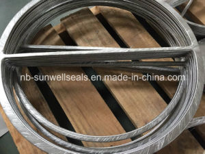Double Jacketed Gasket, Heat Exchanger Gasket pictures & photos