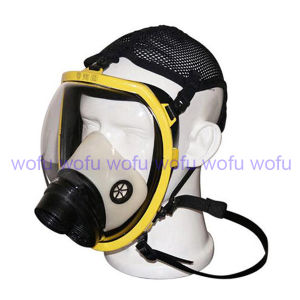 Silicone Full Face Gas Mask pictures & photos