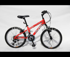 "20"" Children Bicycle/Child Bike/BMX Cycle (HC-BMX-2050) pictures & photos"