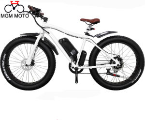 Beach Cruiser Wide Tire Mountain Electric Bicycle pictures & photos