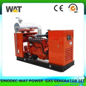 10-200kw Gas Generator Set 2017 Hot Sale pictures & photos