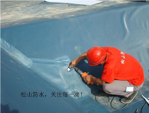PVC Swimming Pool Liner / Buiding Material Waterproofing Sheet Membranes pictures & photos