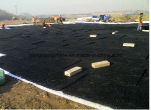 3D Geomat for Drainage (Erosion geomat) pictures & photos