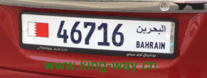 European License Plate Frame with Raised Logo