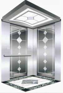 Attractive Passenger Elevator for Hotel pictures & photos