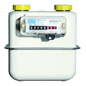 G2.5 Steel Case Diaphragm Gas Meter