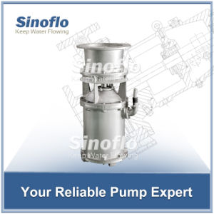 Large Pump High Flow Electric Water Transfer Submersible Blade Pump pictures & photos