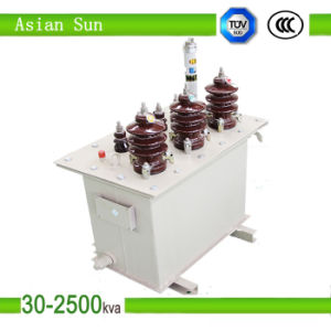 11kv Oil Cooled Oil-Immersed Power Transformer (250kVA) pictures & photos