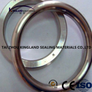 (KLG441) Octagonal Ring Joint Gasket pictures & photos