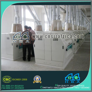 Turnkey Basis 80-300ton Wheat Flour Grinding Plant pictures & photos