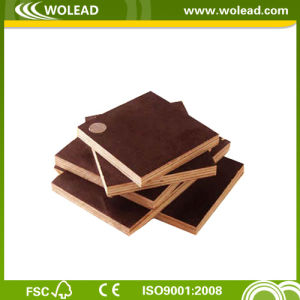 Water-Proof Shuttering Plywood for Concrete (w15492)