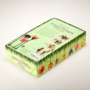Paper Box with Booklet and Window pictures & photos