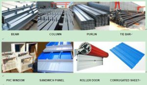 Portable Steel Frame Airplane Hangar with Flexible Lifting Door pictures & photos