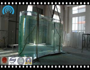 Customized Acrylic Irregular Freshwater Aquarium pictures & photos