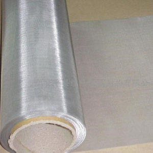 Silver Wire Mesh, Silver Wire Cloth pictures & photos