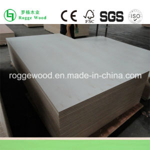 1220*2440mm Poplar Plywood 18mm for Sale