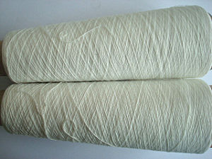 100% Polyester Yarn -Raw White Ne12s/1 pictures & photos
