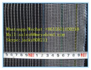 Leno Weave/English Type Anti Hail Net for Europen Markets pictures & photos