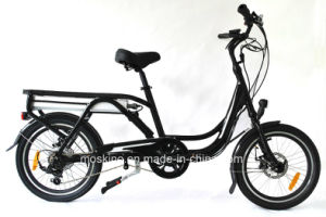 Italian Manufacturer Lithium Electric Bicycle (TDN03Z)