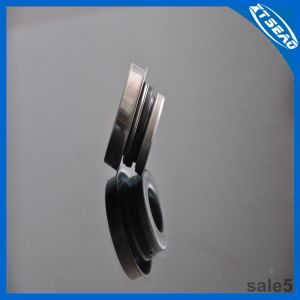 Water Pump Seal Rotary Shaft Seals Flowserve Seals pictures & photos
