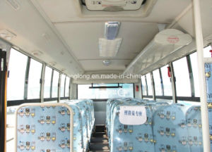 6m School Bus with 26 Seats pictures & photos