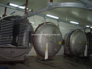 Fruit and Vegetable Vacuum Freeze Dryer/Drying Machine for Fruit pictures & photos