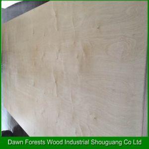 1220X2440 Birch Veneer Plywood pictures & photos