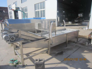 Air Bubble Fruit Vegetable Washing Machine pictures & photos