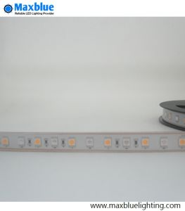RGB LED Strip/LED Strip Light/Flexible LED Strip pictures & photos