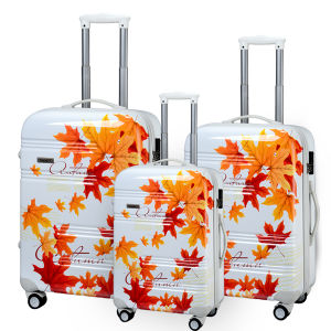 "100% PC Luggage Set for Travel (PCL001-C20""24""28"") pictures & photos"