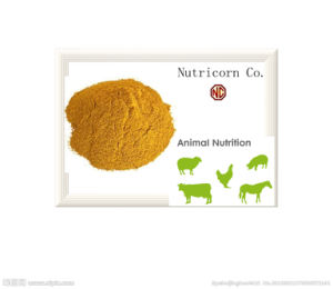 Nutricorn, China Supplyment Corn Gluten Meal with Good Quality pictures & photos