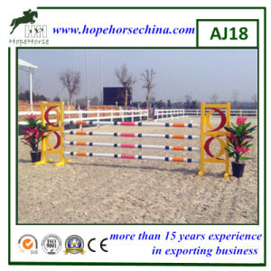 Horse Obstacle for Show Jumping pictures & photos