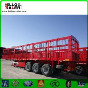 China Tri-Axles Cargo Trailer 50 Ton Cargo Semi-Trailer for Sale pictures & photos
