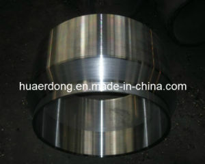 Steel Special Flange (J005) pictures & photos