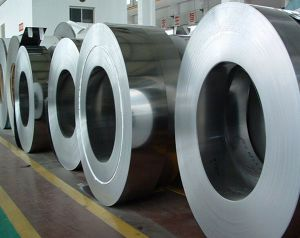 305 Stainless Steel Coil (SUS305)