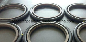 Hbts PTFE+Bronze+NBR RS Step Seal pictures & photos