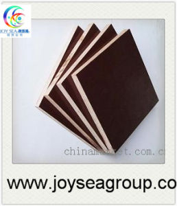 Brown Film Faced Plywood Price Specifications pictures & photos