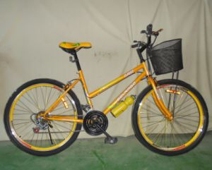 Good Quality 18sp Mountain Bike Woman Bicycle (FP-LDB-028) pictures & photos