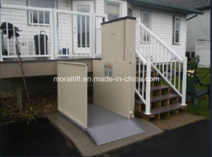 300kg Capacity Vertical Residential Disabled Lift Platform pictures & photos