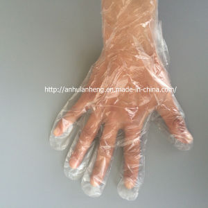 Disposable PE Gloves for Food Handling Use pictures & photos