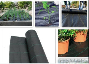 Ground Cover Fabric/ Landscape Fabric with Flat Loom pictures & photos