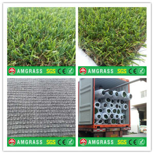 Drying Machine for Grass and Artificial Turf for Garden pictures & photos