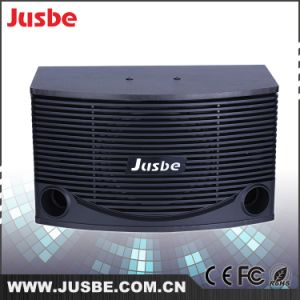 Manufacturer Wholesale 200W 10 Inch Karaoke Power Speaker for OEM pictures & photos