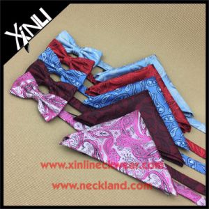 Wholesale Custom Woven Silk Bow Tie Paisley pictures & photos